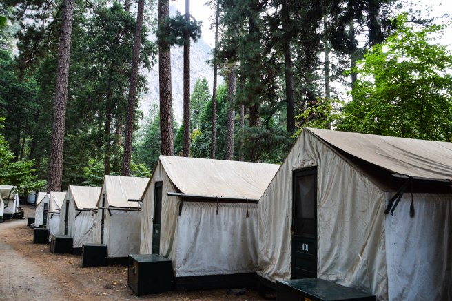 tents3-1-of-1